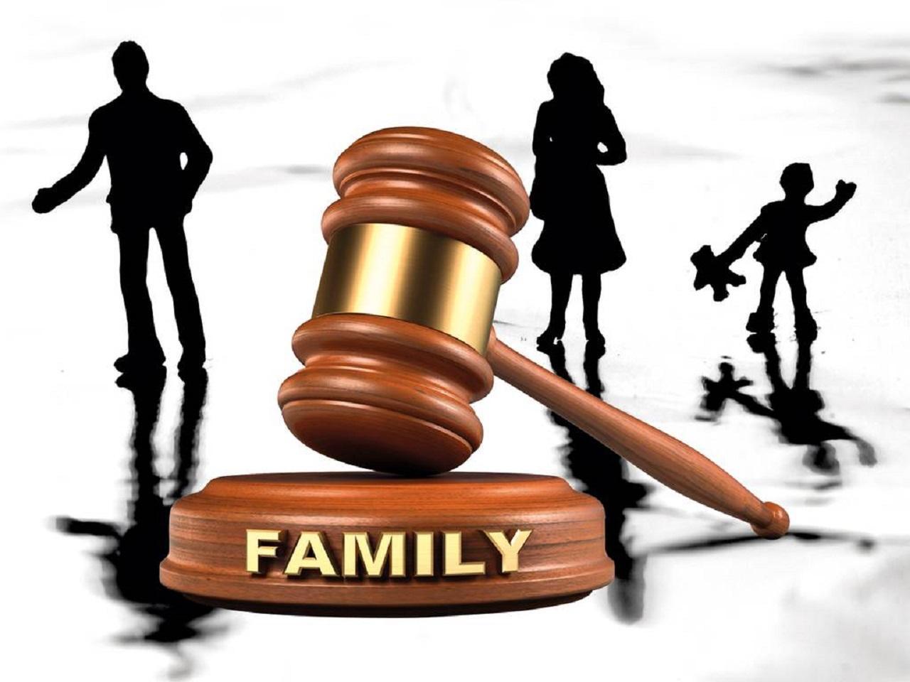 Family Court Case Management