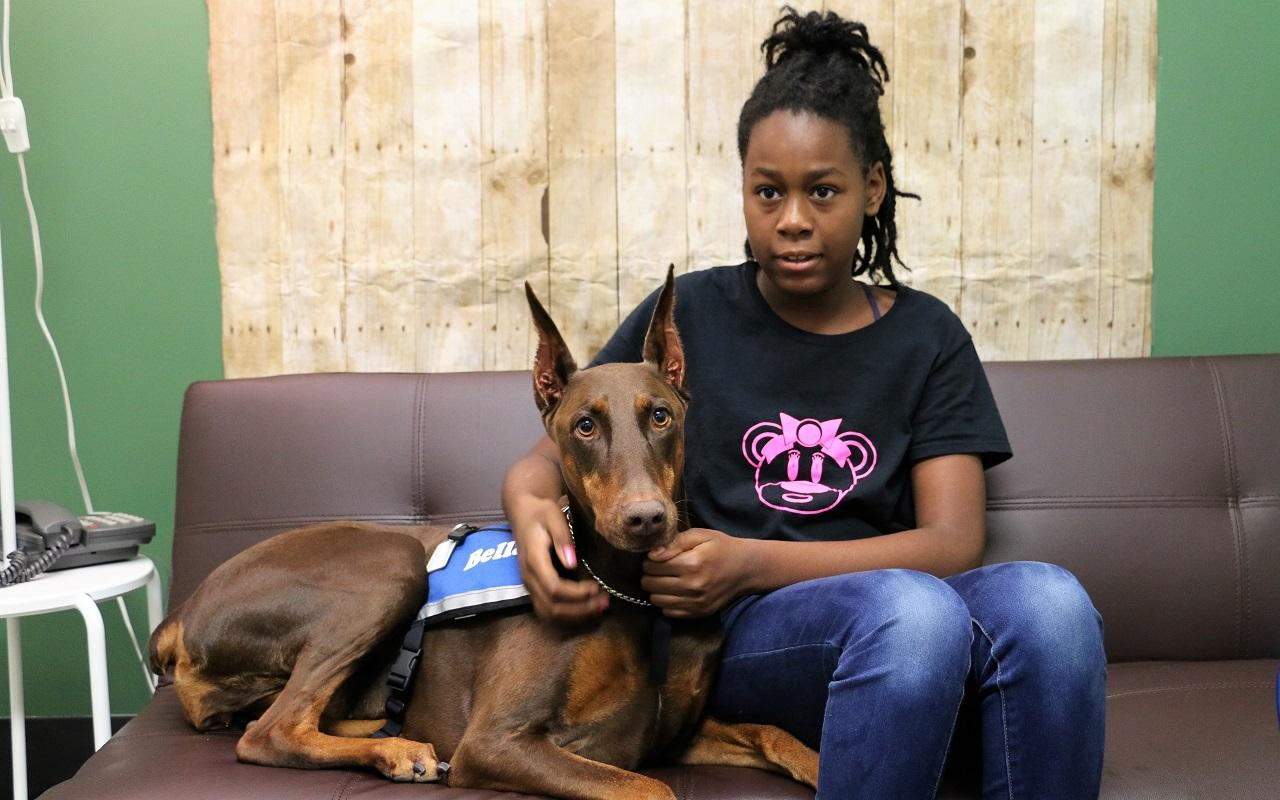 K9th Circuit Program - Bella, therapy dog
